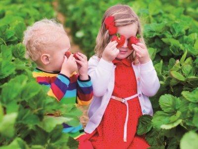 Frugt og Børn
